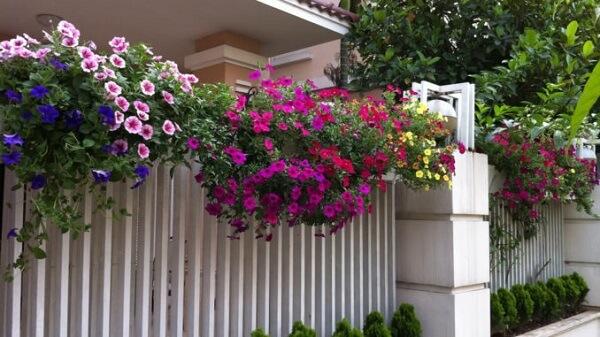 Tường rào màu trắng lãng mạn